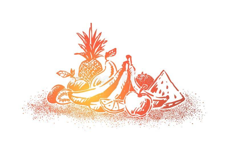 Läckra nya frukter, mogen sommarefterrätt, saftigt äpple, vattenmelonstycke, ananas, bananer, citronskiva royaltyfri illustrationer