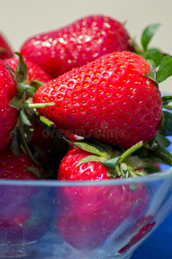 Läckra nya jordgubbar arkivbild