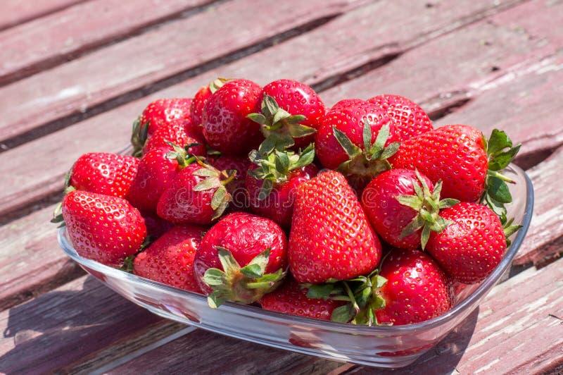 Läckra nya jordgubbar royaltyfri foto