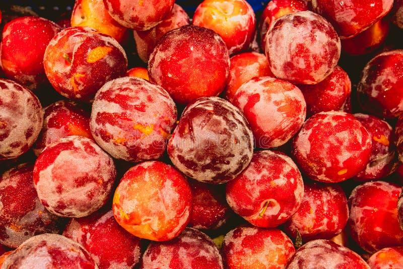Läckra röda plommoner i marknad arkivfoto