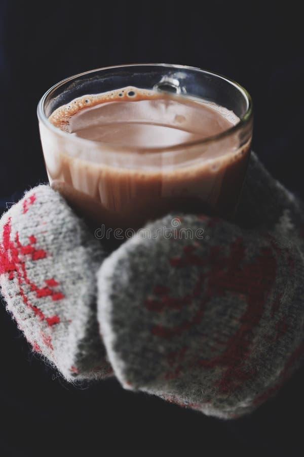 Läckra tjocka varm choklad- och rät maskatumvanten royaltyfri bild