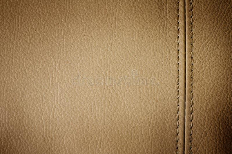 läder royaltyfria foton
