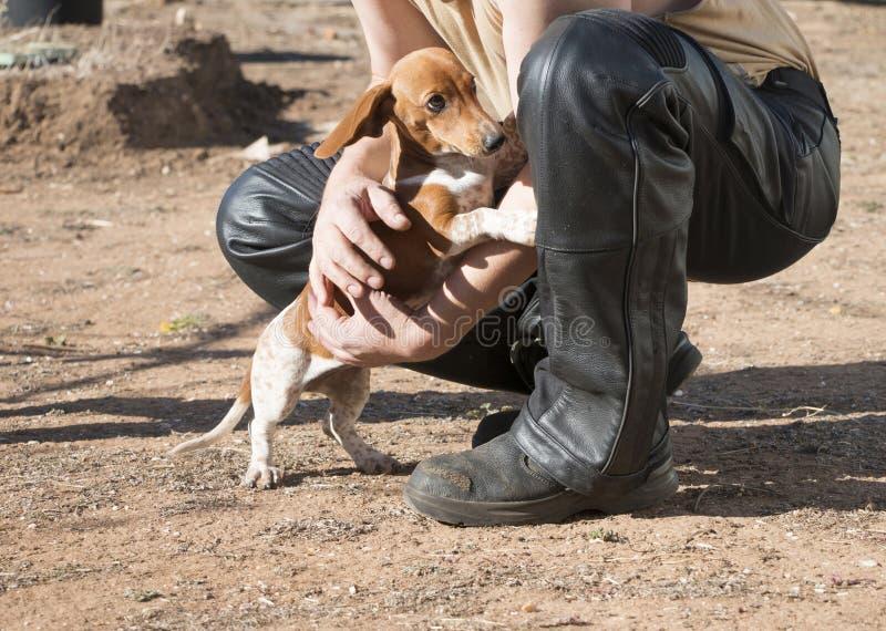 Läder-klädd man och gulligt hundfölje arkivbilder
