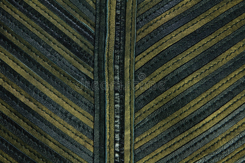 lädermodellremsor royaltyfri foto