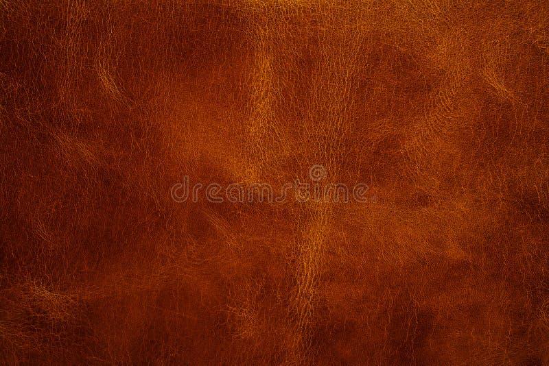 lädertextur royaltyfria bilder