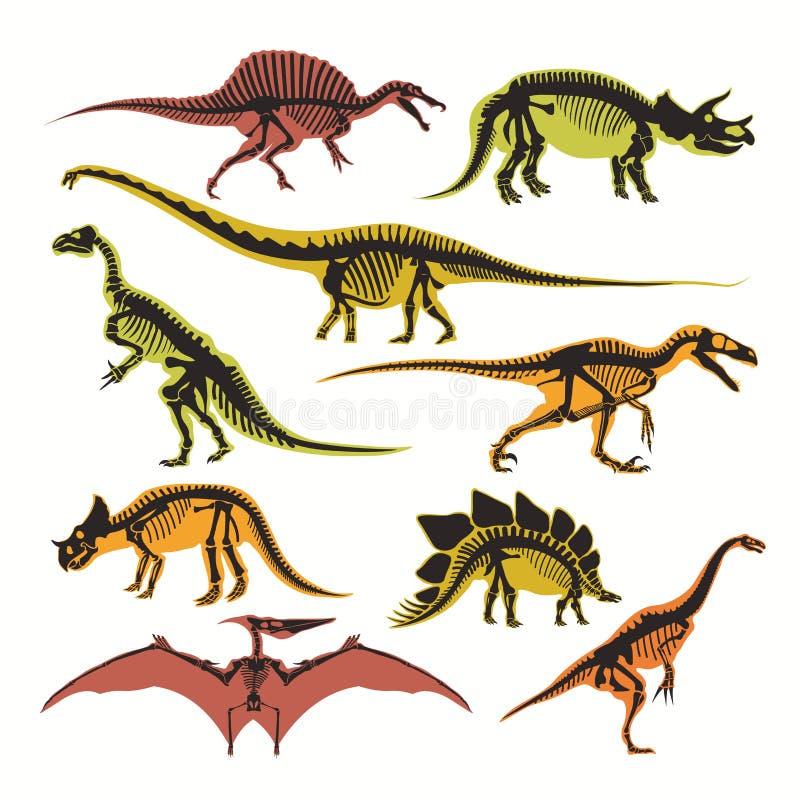Lägenheten för dinosaurieskelett- och konturvektorn isolerade symboler av tyrannosarien, flygödlan och brontosaurusen stock illustrationer