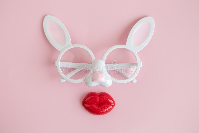 Lägenheten lägger av kaninglasögon med plast- kanteaster abstrakt begrepp royaltyfria bilder