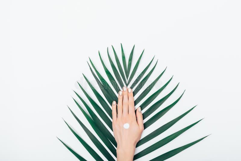 Lägenheten lägger sammansättningskvinnligns hand med droppe av kosmetisk kräm arkivbilder