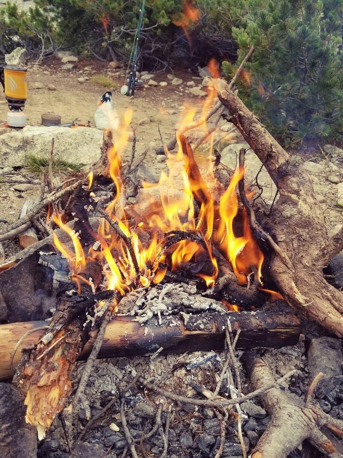 Lägerbrand arkivbilder