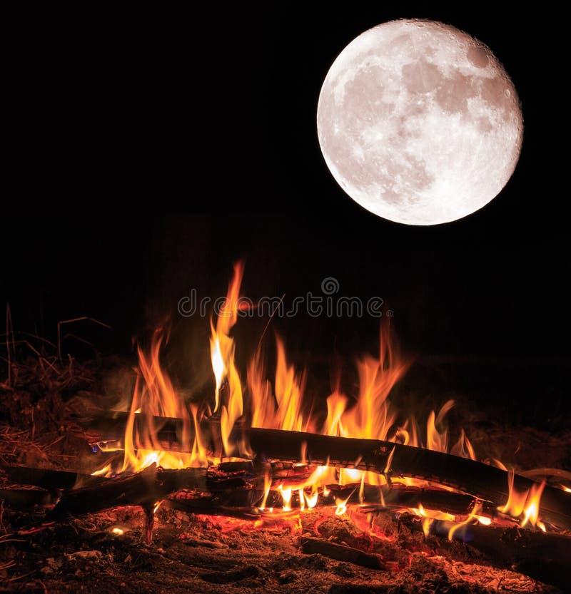 Lägerbrand och stor måne på natten arkivfoton