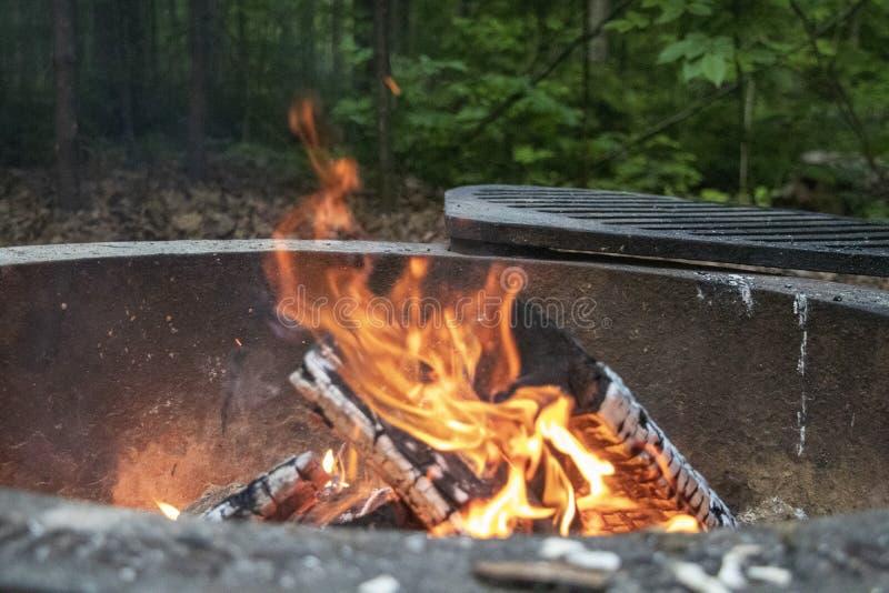 Lägereldflammor i skogen royaltyfri bild