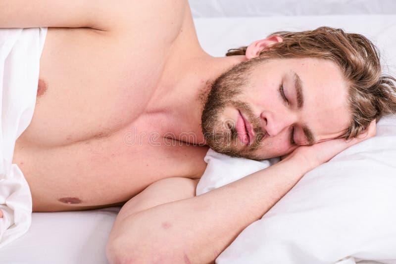 Lägger den stiliga grabben för mannen i säng i morgon Spetsar på hur man vaknar upp mening nytt och driftigt Rutinmässiga spetsar royaltyfri bild
