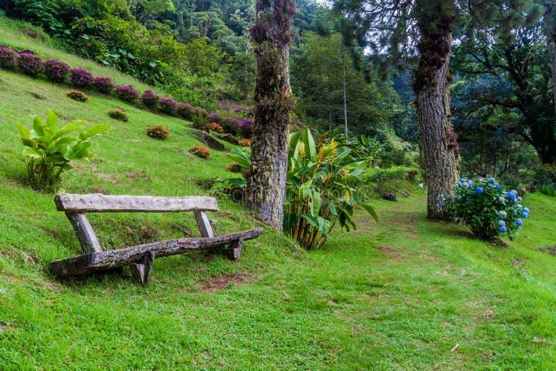 Lägre del av Lost den fotvandra slingan för vattenfall nära Boquete, Pana fotografering för bildbyråer