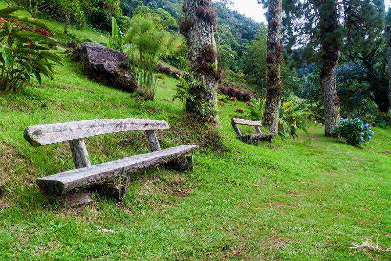 Lägre del av Lost den fotvandra slingan för vattenfall nära Boquete, Pana arkivfoto