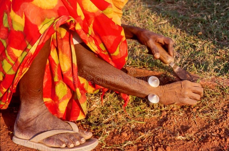 Lägre kroppsdel av en gammal indisk kvinna som som rensar gräsgräsmatta vid händer royaltyfria foton