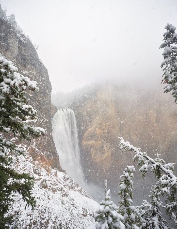 Lägre Yellowstone nedgångar med fallande snö arkivfoton