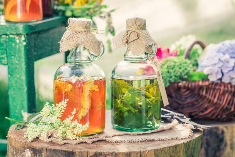 Läka örter i flaskor med örter och alkohol i sommar royaltyfri fotografi