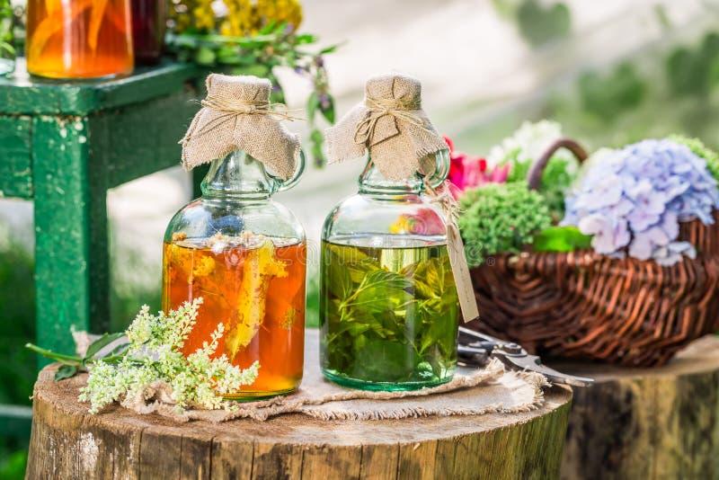 Läka örter i flaskor med alkohol och örter royaltyfria foton