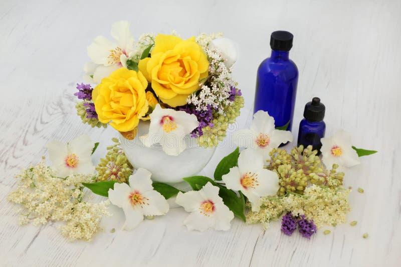 Läka blommor och örter royaltyfri bild