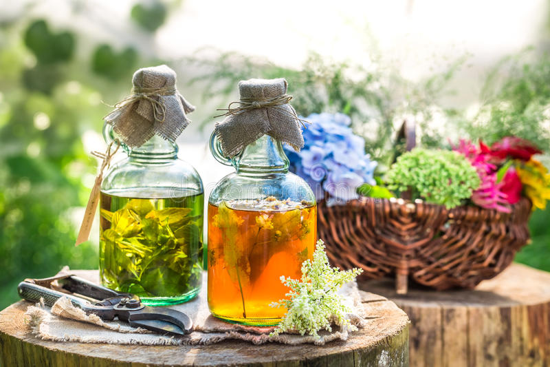 Läka tinktur i flaskor med alkohol och örter royaltyfri foto