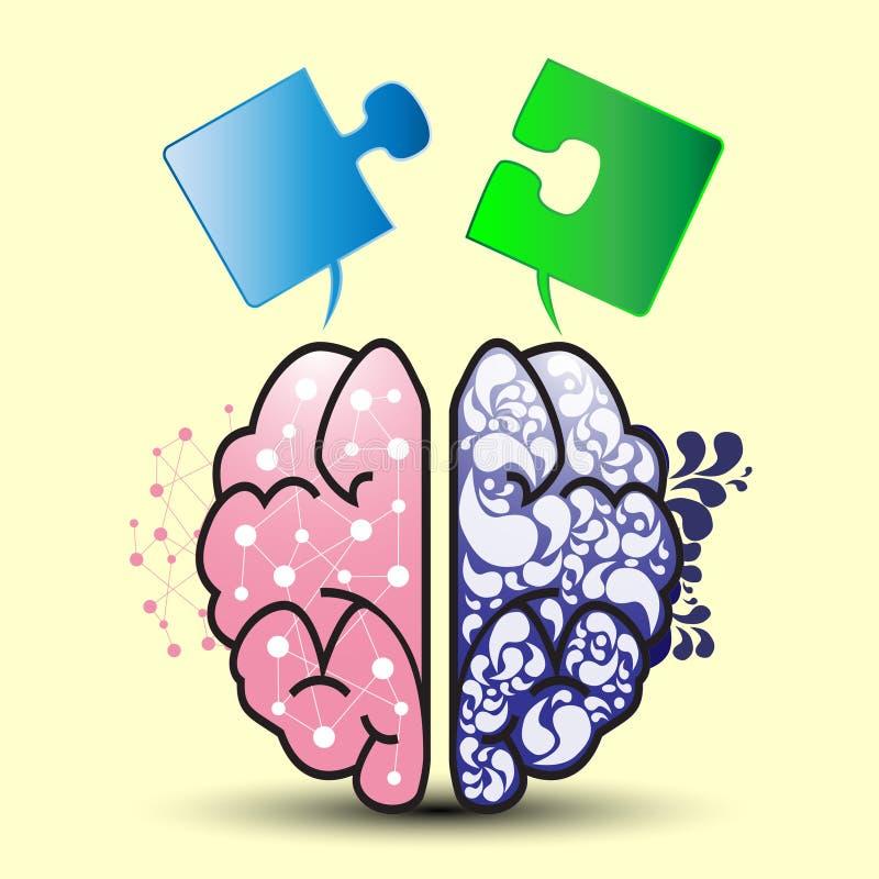 Lämnad hjärna och rätt vektor illustrationer