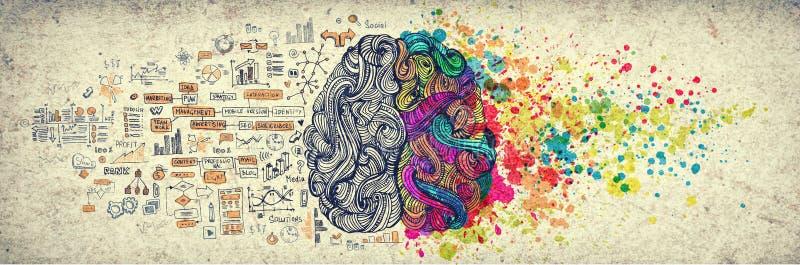 Lämnat högert begrepp för mänsklig hjärna, texturerad illustration Idérik vänster och höger del av mänsklig hjärna, emotial och l royaltyfri illustrationer