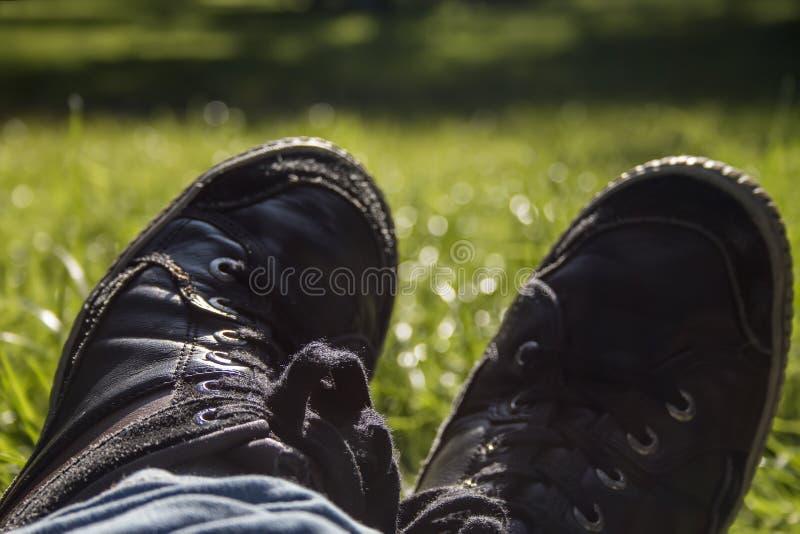 Ländlich idyllisch schwarze städtische Trainer über Hintergrund des grünen Grases stockbild