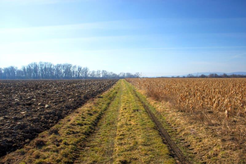 Ländliche Bahn durch Feld stockfotos