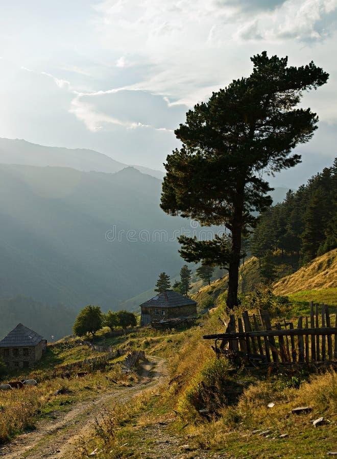 Ländliche Landschaft in Berge stockbilder