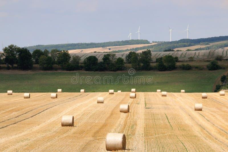 L?ndliche Landschaft des Sommers mit dem Ernten des Feldes, hayrolls, blauer Himmel, B?ume am Horizont sonniger Morgen lizenzfreie stockfotografie
