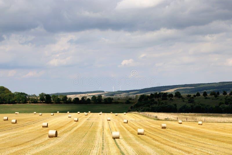 L?ndliche Landschaft des Sommers mit dem Ernten des Feldes, hayrolls, blauer Himmel, B?ume am Horizont sonniger Morgen lizenzfreie stockfotos