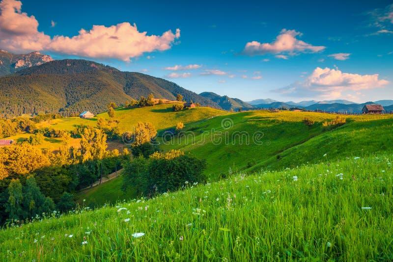 Ländliche Landschaft des Sommers und hölzerne Hütten, nahe Kleie, Siebenbürgen, Rumänien stockbild