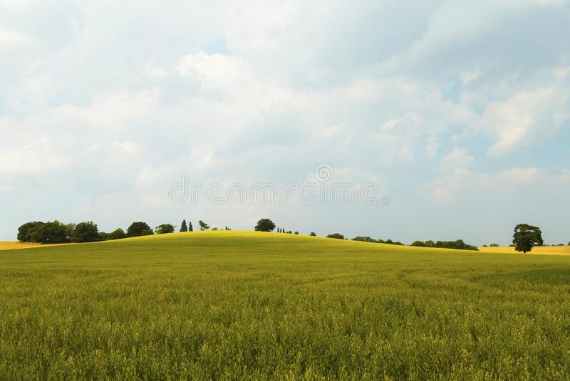 Ländliche Landschaft in Essex, Großbritannien stockbilder