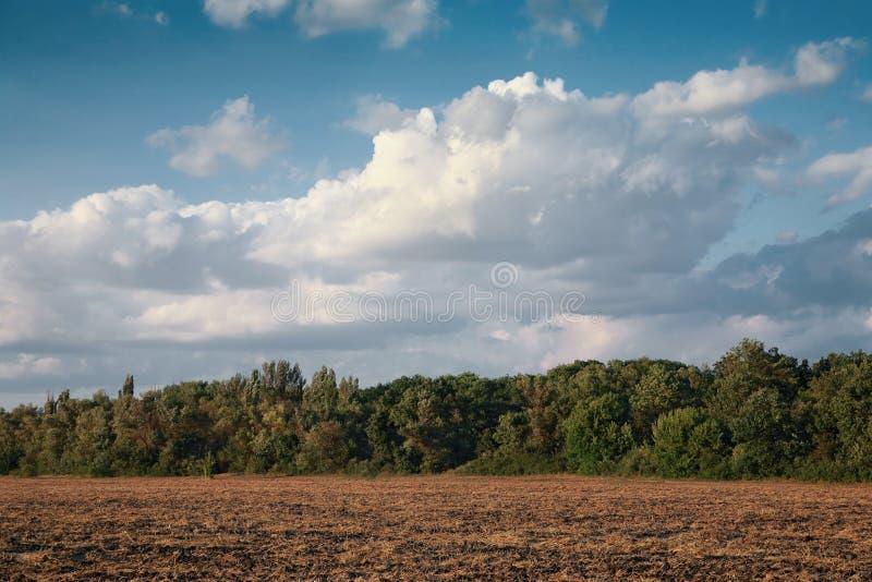 Ländliche Landschaft, gesäubertes Feld lizenzfreies stockbild