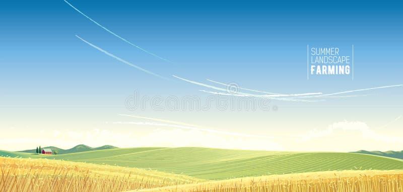 Ländliche Landschaft mit Weizen lizenzfreie abbildung