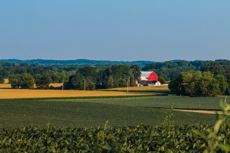 Ländliche Sommer-Bauernhof-Szene in Wisconsin stockbild