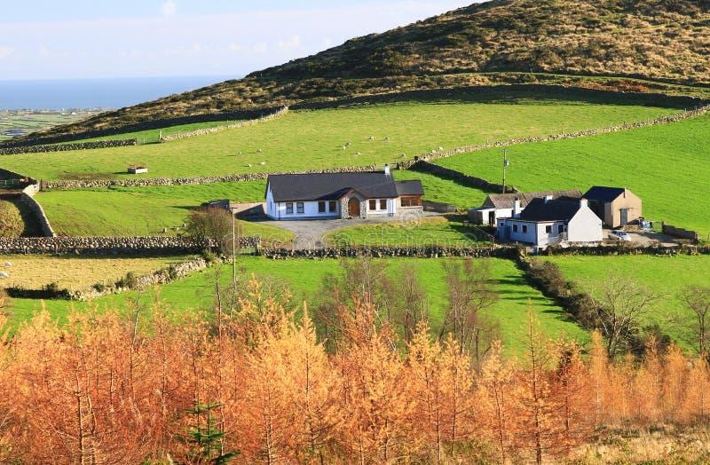 Ländliche Wohnung in Nordirland, Großbritannien stockbild