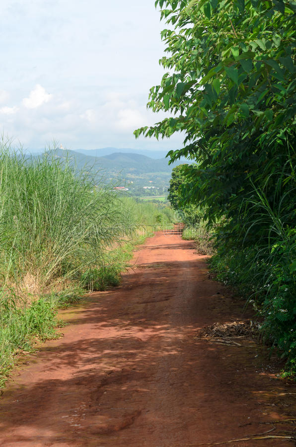 Ländlicher Schotterweg und grüne Wiese in den ländlichen Dörfern stockfotos