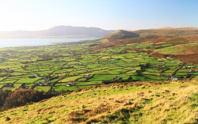 Ländliches Ackerland in Nordirland, Großbritannien stockfotografie
