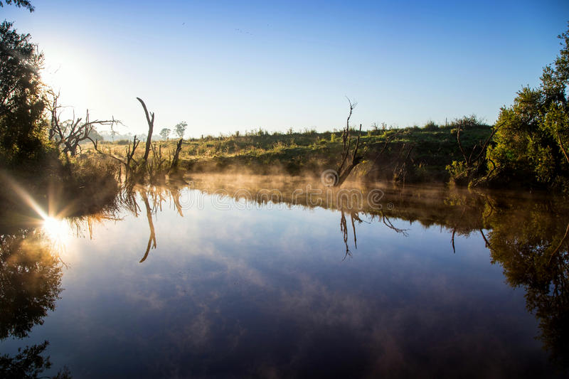 Ländliches Billabong in Queensland Australien stockfotografie