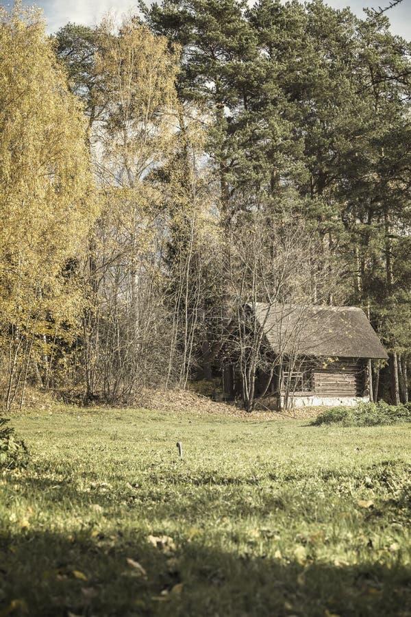 Ländliches verlassenes Haus der alten hölzernen Weinlese, Landyard auf der Franse des Waldes des malerischen Waldes im Herbst lizenzfreies stockbild