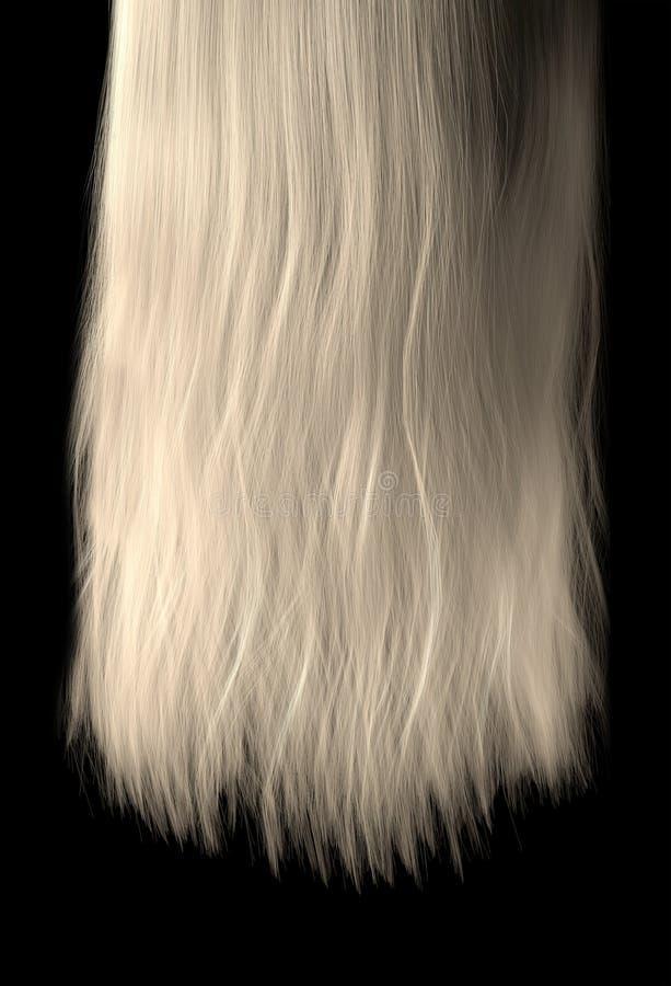 Länge des Haares stock abbildung