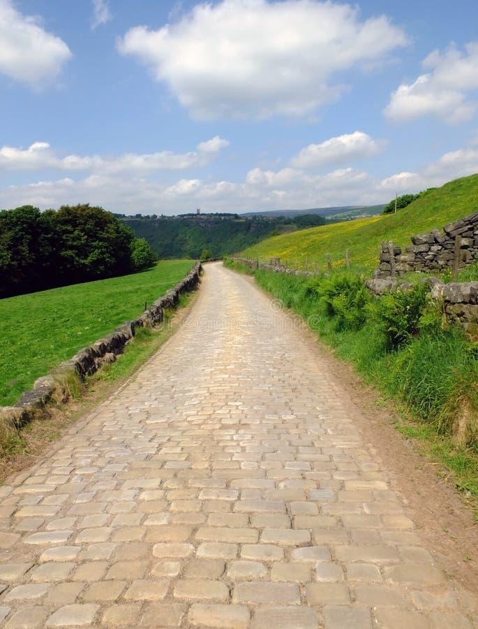Länge lappat köra för stenstenväg som är sluttande i härlig yorkshire dalbygd med gröna sommarängar med skogsmark royaltyfri foto