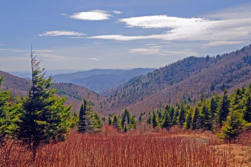längs appalachian bergtrailsikter arkivfoton