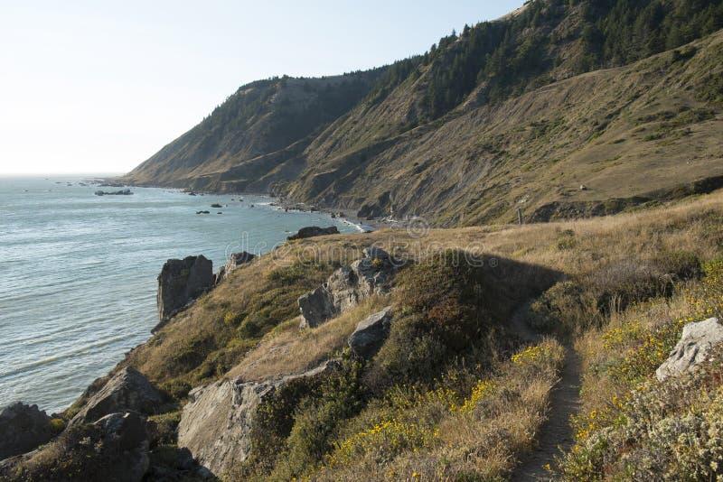 Längs Kaliforniens borttappade kust royaltyfri fotografi