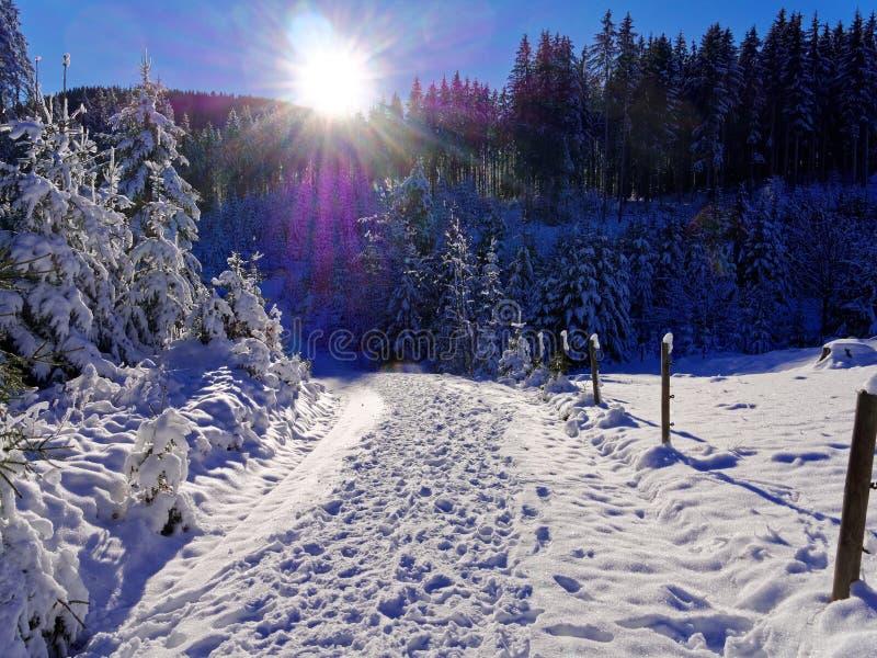 Längsspår i en djup, snötäckt bergsområde med ljus sol royaltyfri foto