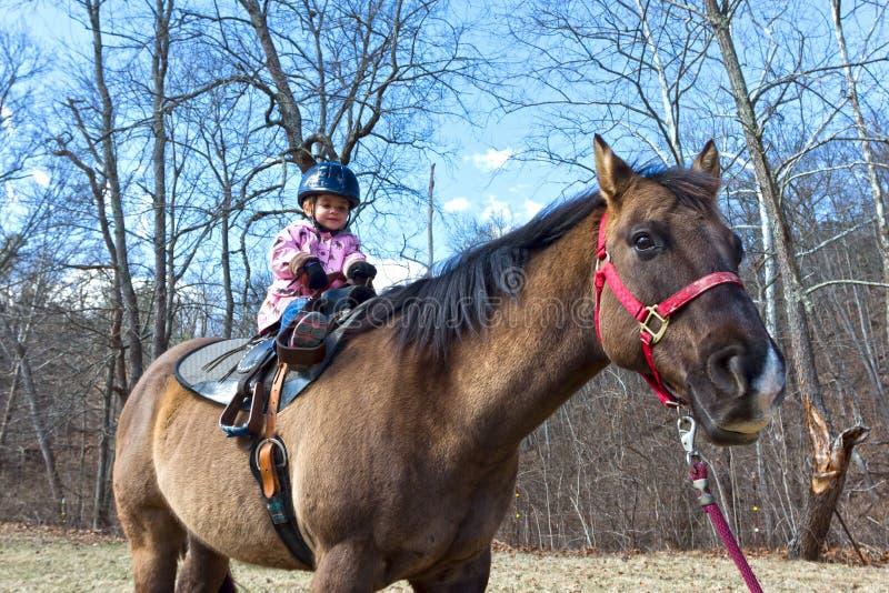 Lära att rida en häst arkivfoto