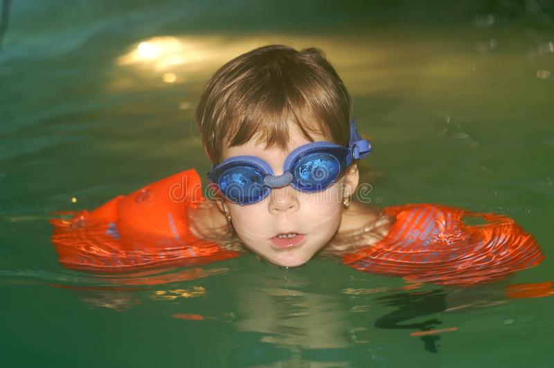 Lära att simma royaltyfri foto
