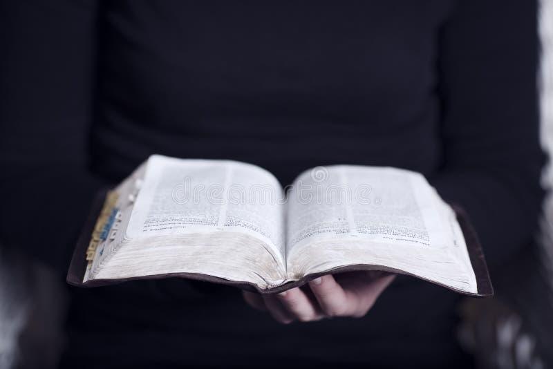 Läsa bibeln arkivfoto