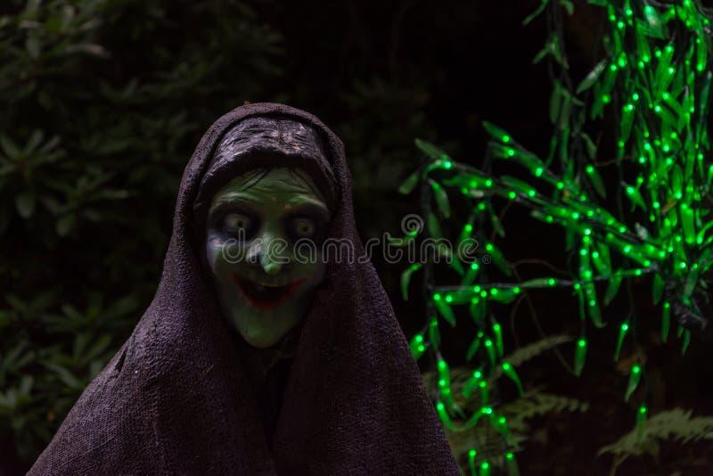 Läskig häxa i mörk bakgrund med gröna felika ljus royaltyfri foto